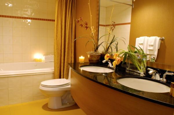 ванная комната краска