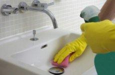 Методы борьбы с проблемой появления белых насекомых в ванной